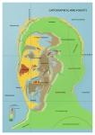 Cartographical Minds